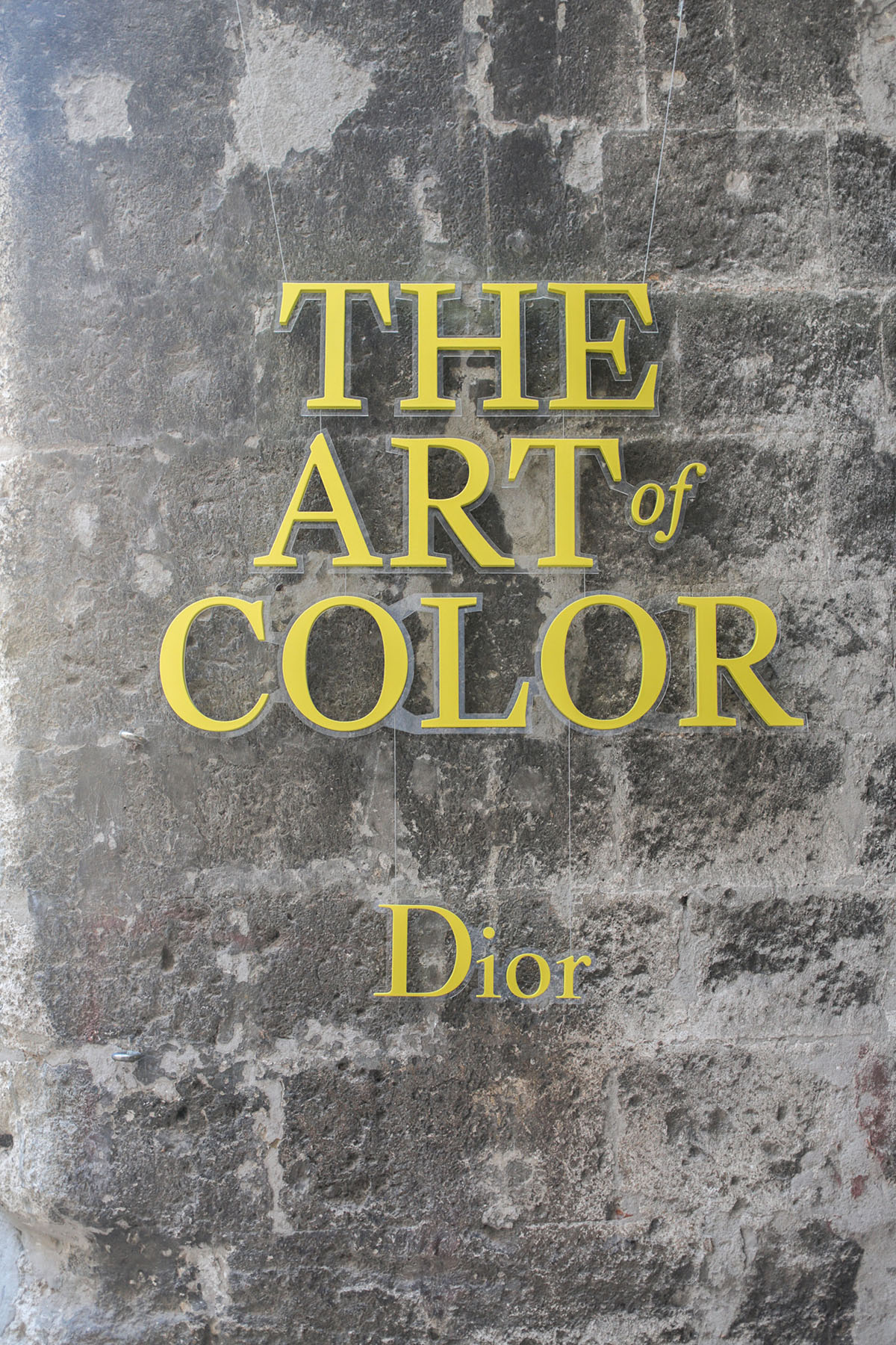 DIOR ART OF COLOR ARLES: Official Dinner Dior & LUMA Foundation in honor of Annie Leibovitz